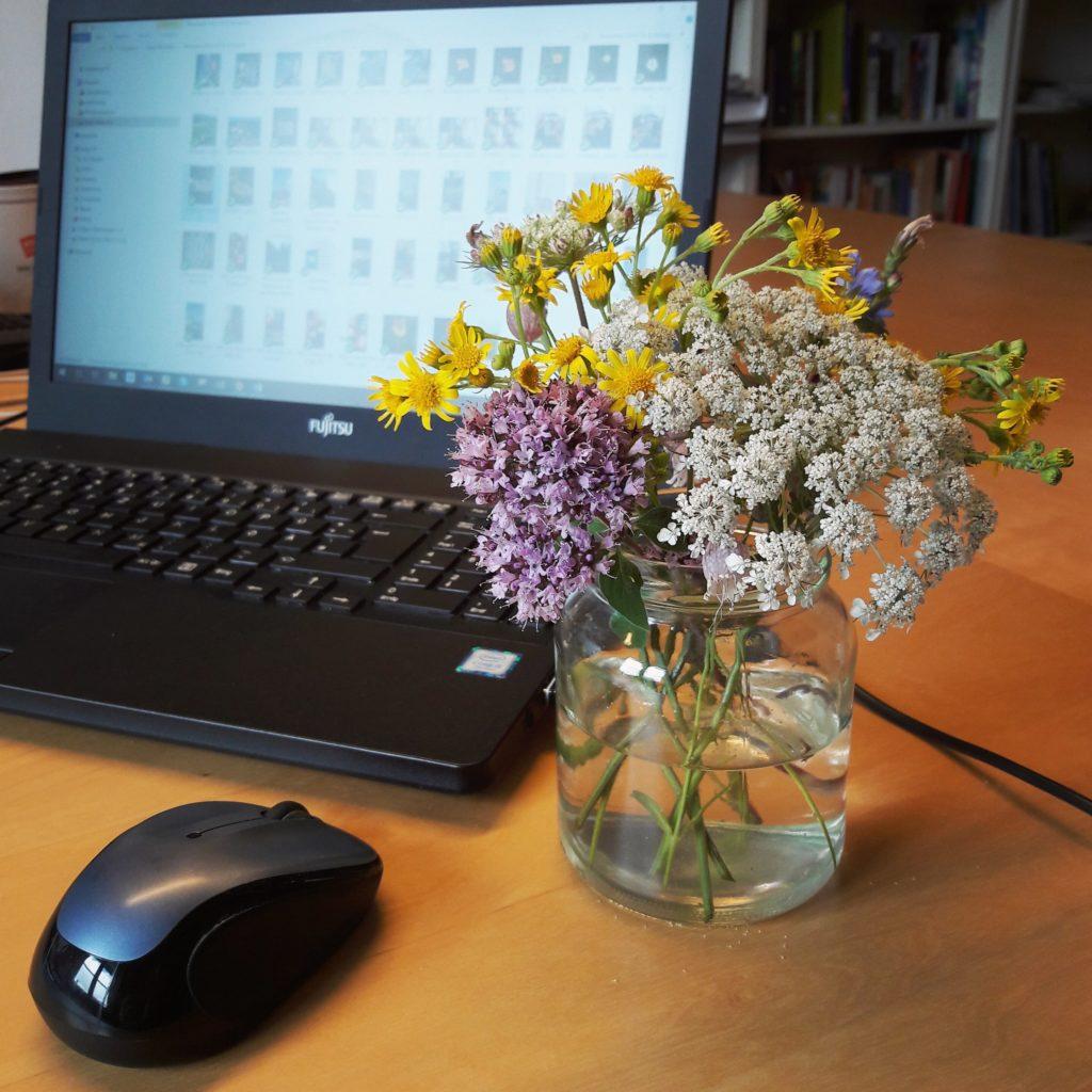 Gute SEO-Texte funktionieren wie Blumensträuße. Bild: kleiner Strauß mit Wiesenblumen auf einem Schreibtisch.